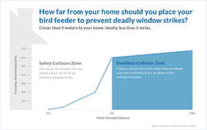 Bird Feeder Safety Zone