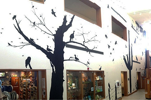 Mural of Silhouettes by James Prosek