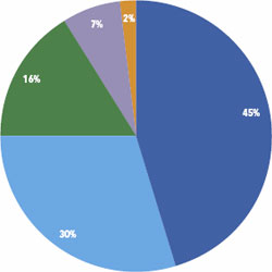 Revenue Piechart for fiscal year 2010 through June 30;