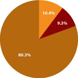 Expenditure Piechart for fiscal year 2011 through June 30;