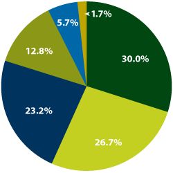 Revenue Piechart for fiscal year 2011 through June 30;