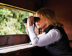 A birder woman looks through binoculars
