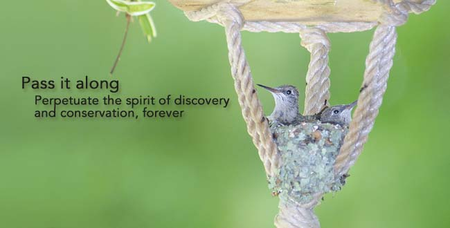 Pass it along: Perpetuate the spirit of discovery and conservation, forever