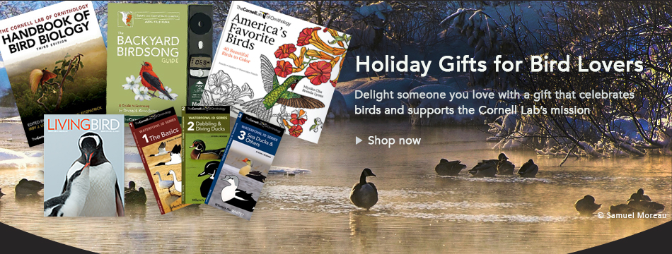 Holiday Gifts that Celebrate Birds