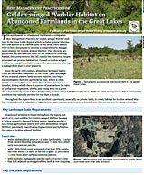 Golden-winged Warbler: Habitat-Specific Best Management Briefs