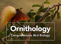 Ornithology Course