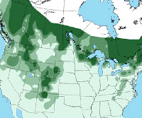 Evening Grosbeak distribution map