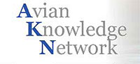 Avian Knowledge Network