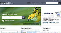 Birds of Neotropical Birds Online