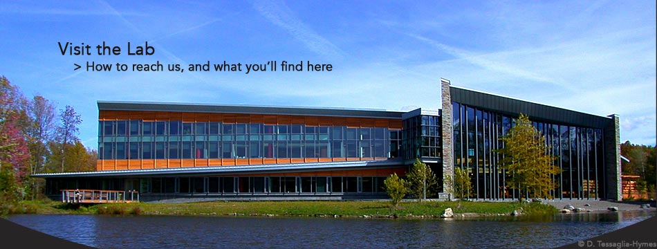 Get directions to the Cornell Lab of Ornithology and learn about all we have to offer in our Visitor Center and out on our trails.