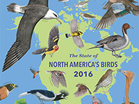 Cover of 2016 State of North America's Birds report