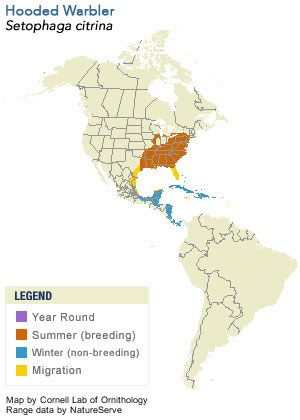 Hooded Warbler Range Map