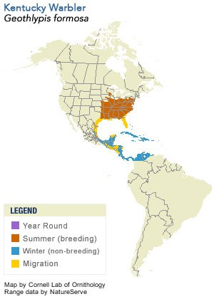 Kentucky Warbler Range Map