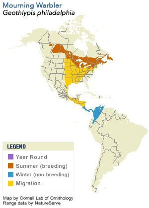 Mourning Warbler Range Map