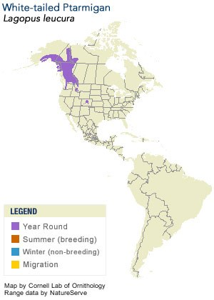 White-tailed Ptarmigan Range Map